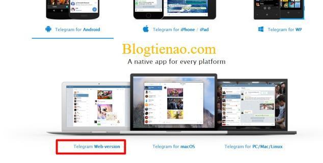 telegram-dang-ky-web-1